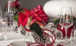 Gwiazda betlejemska - wyjątkowa dekoracja wigilijnego stołu. INSPIRACJE