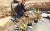KROK VII - Zasadzanie roślin w strefie bagiennej