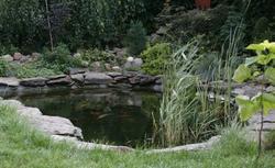 Pomysł na ekologiczny ogród przydomowy. Zakładanie i pielęgnacja eko ogrodu
